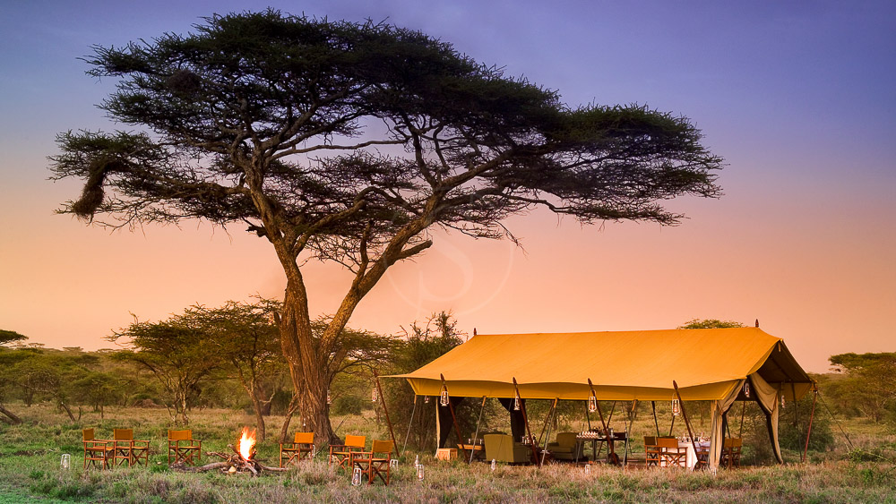 Serengeti Under Canvas, Tanzanie © &Beyond