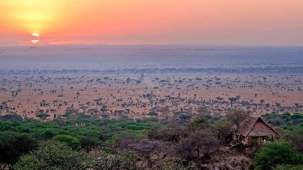 Pioneer Camp Serengeti, Tanzanie
