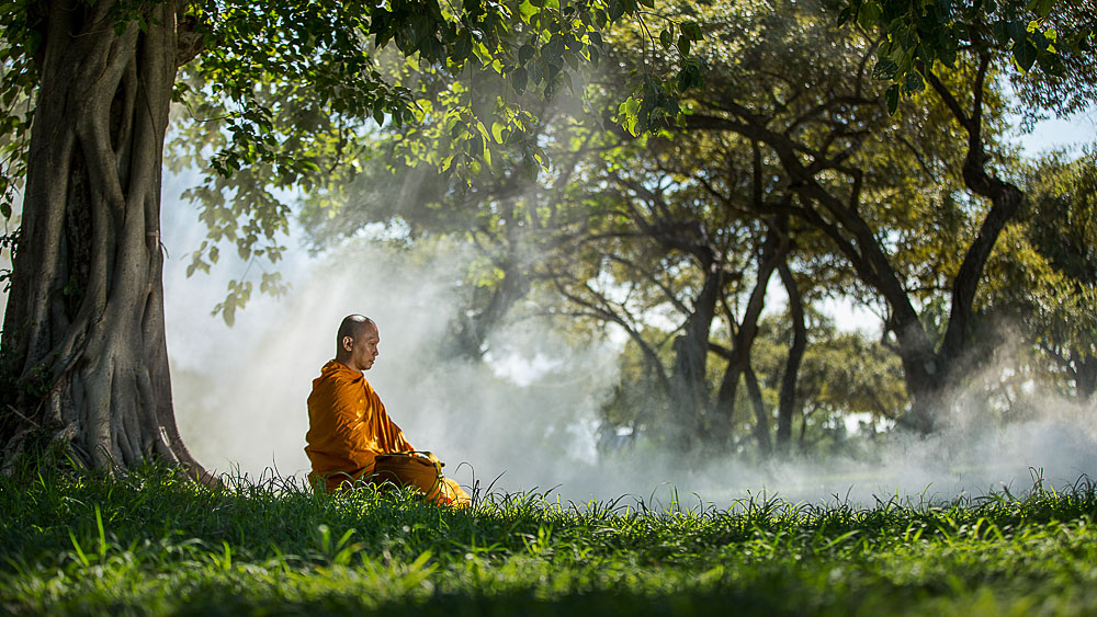 Région de Ayutthaya, Thailande © Shutterstock