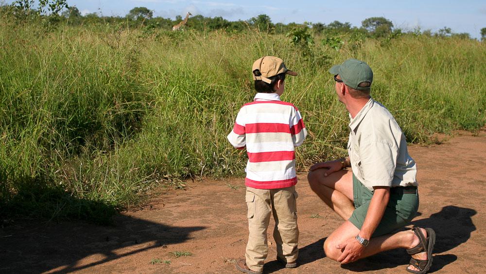 Safari en Afrique du Sud © Laurent Guillot