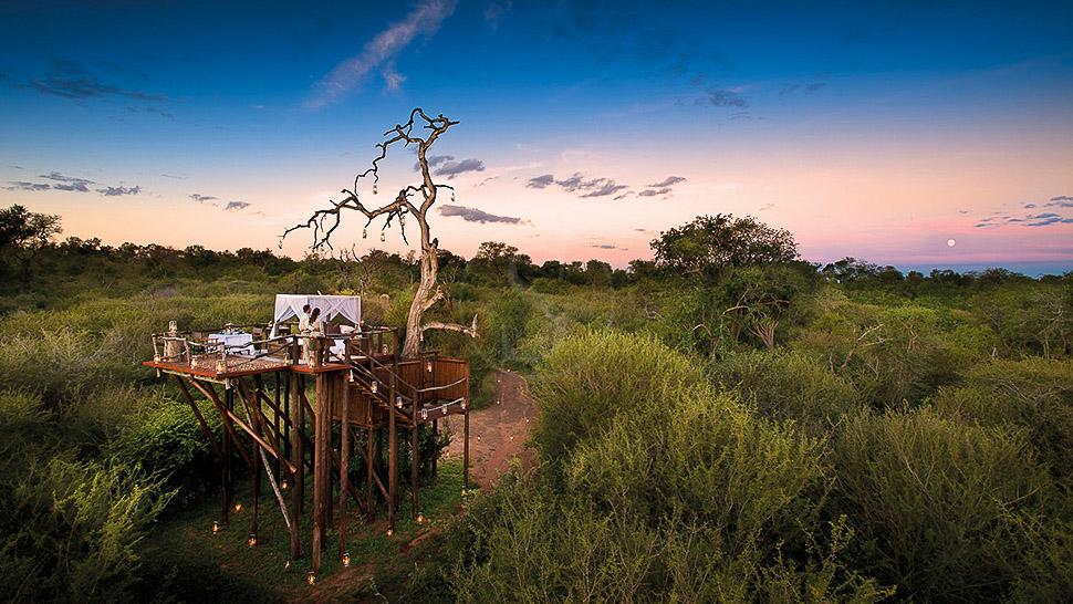 Chalkley Treehouse de Lion Sands, Afrique du Sud