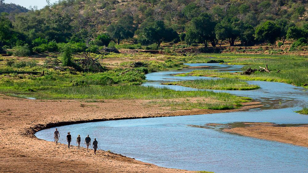 Pafuri Walking Trails, Afrique du Sud