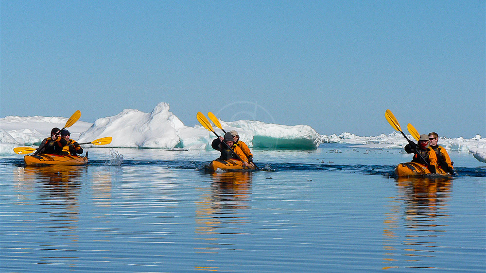 Excursion en Kayak, Spitzberg © Andre Gostnikov