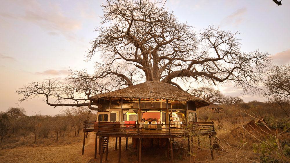 Tarangire Tree Top, Tanzanie