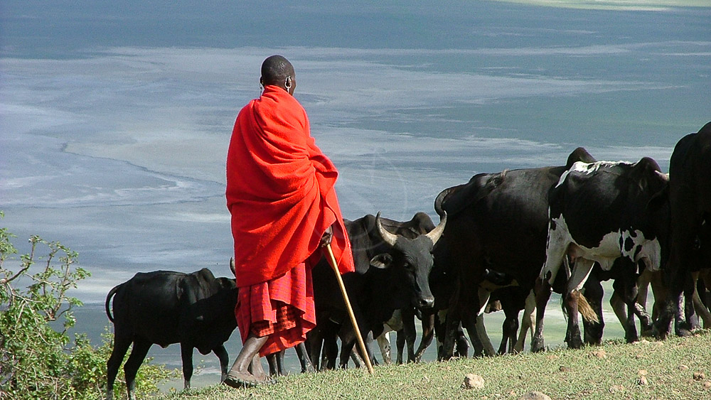 Maasai, Tanzanie © Tawisa