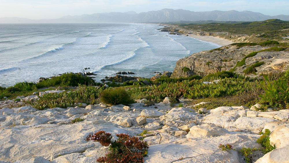 Plage de Gansbaai, Afrique du sud
