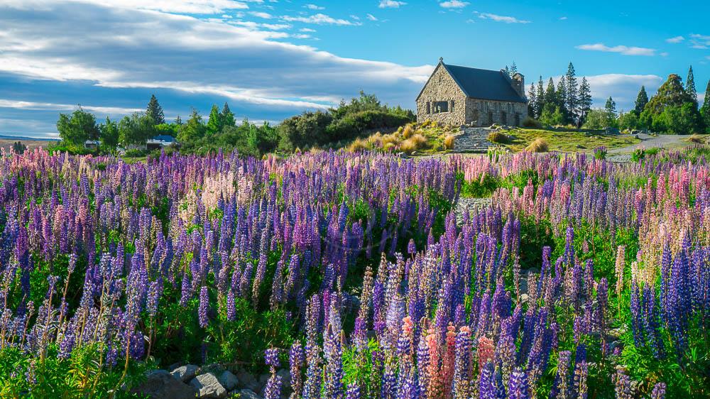 Lac Tekapo, Nouvelle Zélande © Shutterstock
