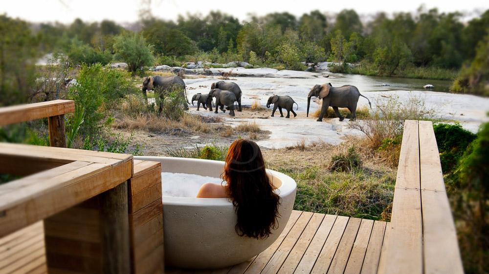Londolozi Granite Suites, Afrique du Sud © Londolozi