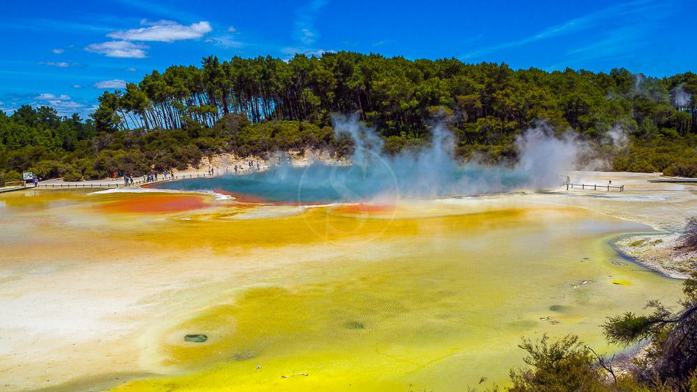 Rotorua, Nouvelle Zélande © Shutterstock