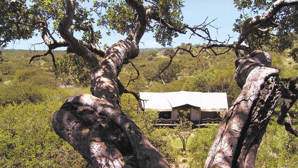 Serengeti Migration Camp, Tanzanie