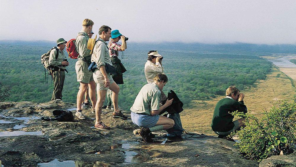 Safari à pied dans le Kruger, Afrique du sud