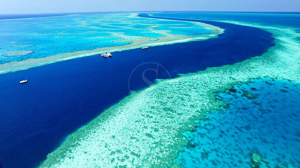 Grande barrière de corail, Australie © OT Australia