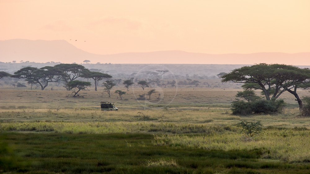 Namiri Plains Camp, Tanzanie © Asilia - Paul Joynson Hicks