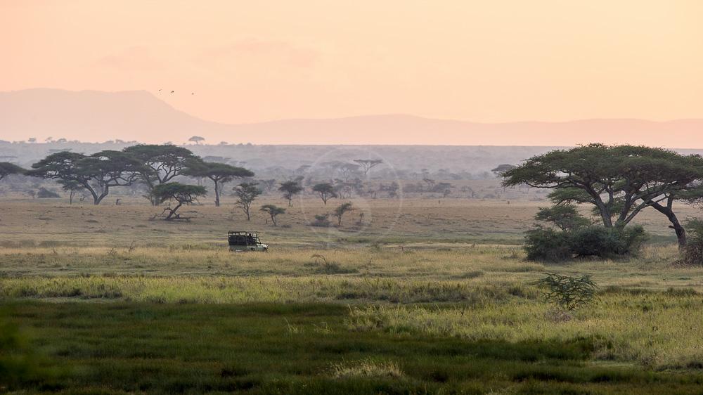Namiri Plains Camp, Tanzanie © Asilia - Paul Joynson Hicks