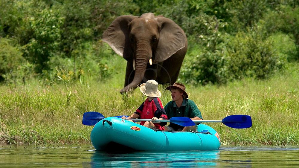 Activités à Victoria Falls