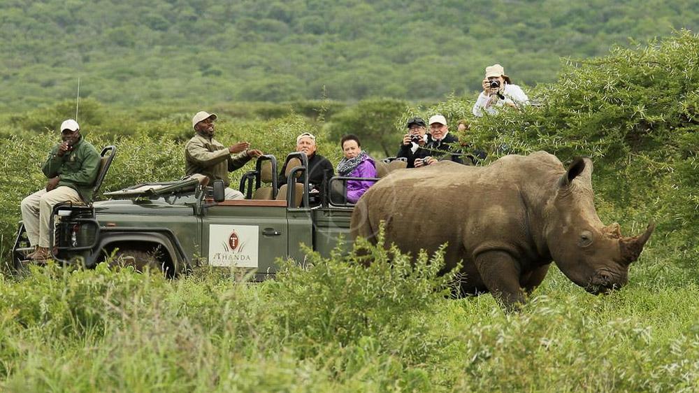 Thanda Game Reserve, Afrique du Sud © Christian Sperka