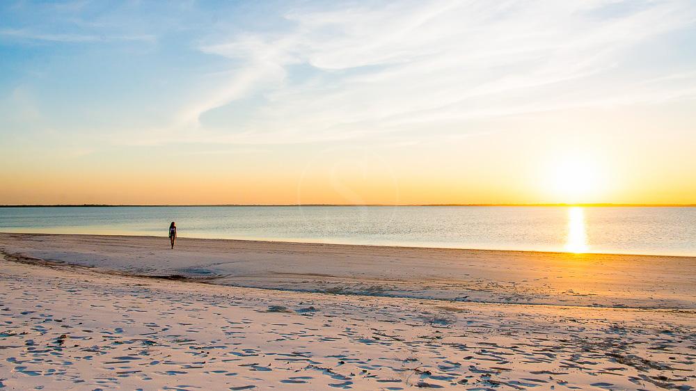 Konokono Zanzibar, Tanzanie