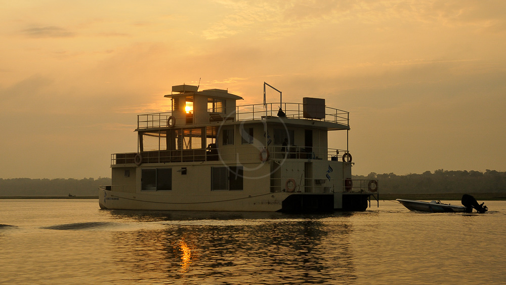 Safari sur la rivière Chobe, Botswana © Eric Jouaux