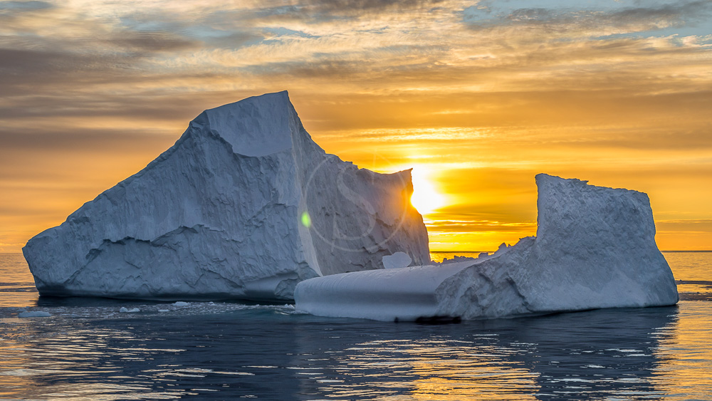 Péninsule, Antarctique © Shutterstock