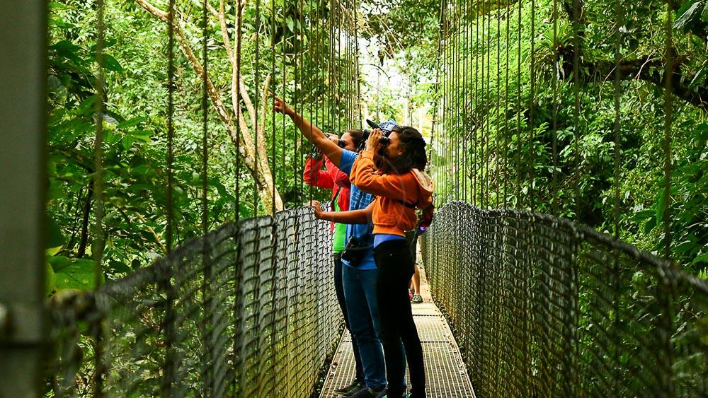 Ponts suspendus à Arenal, Costa Rica
