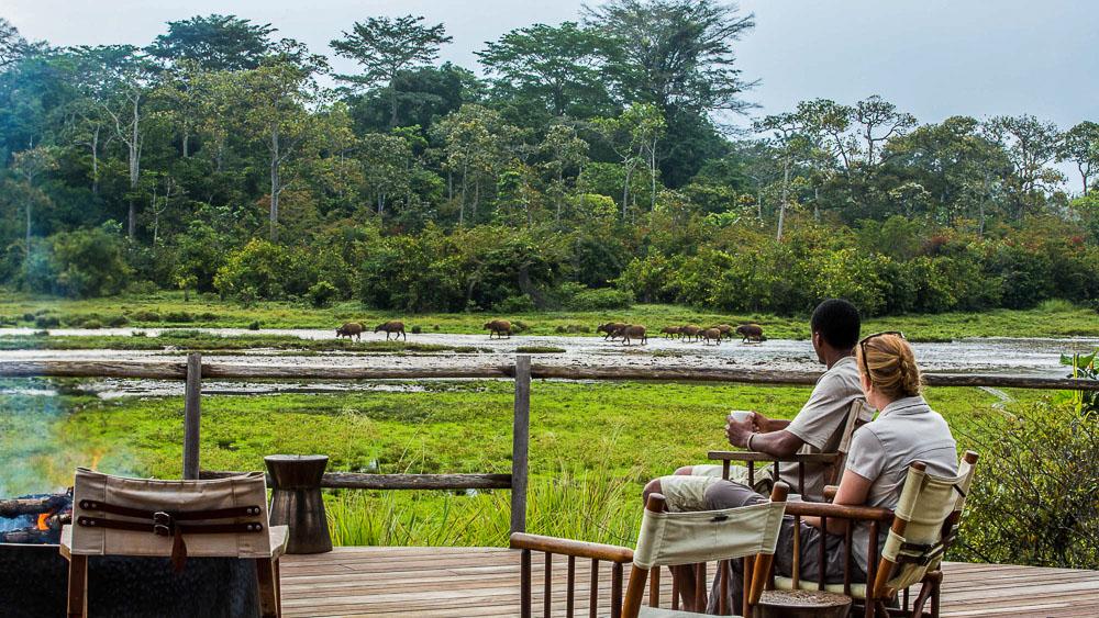 Lango Camp, Congo