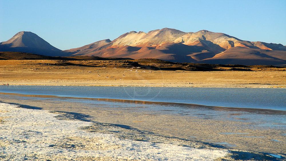 Désert de l'Atacama, Bolivie © Alain Pons