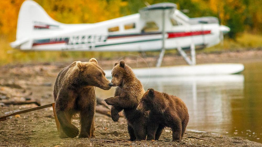 Stillpoint Lodge, Alaska © Stillpoint Lodge