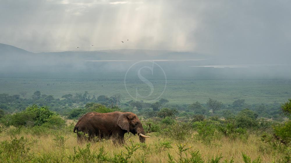 Magashi Lodge, Rwanda © Wilderness Safaris - D. Allen