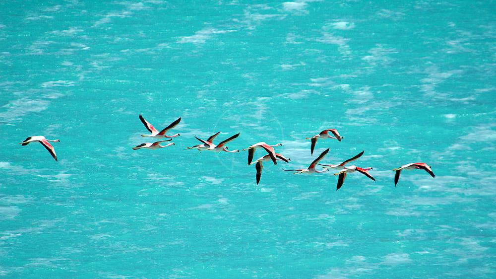 Laguna Verde, Bolivie © Alain Pons