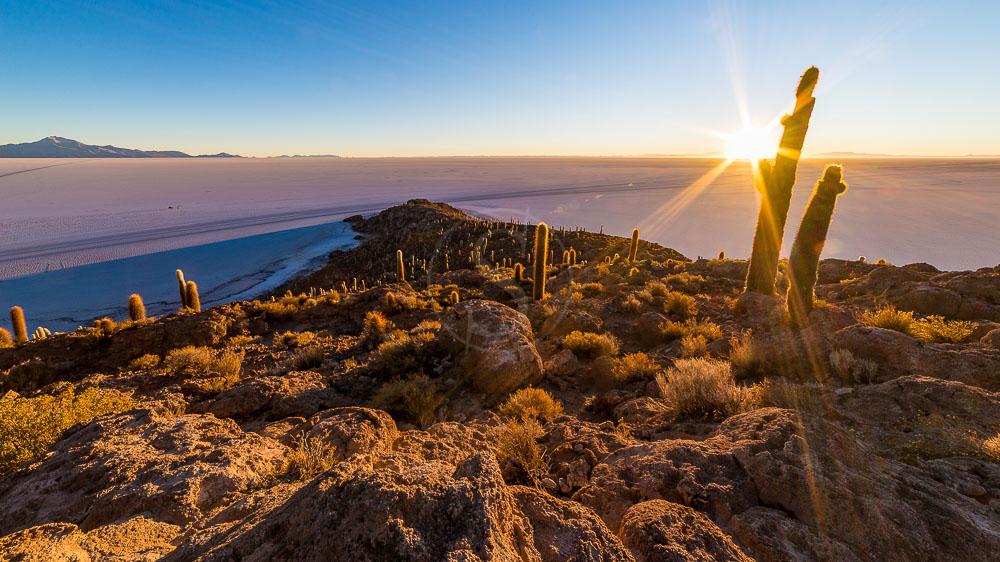 Atacama, Chili © Shutterstock