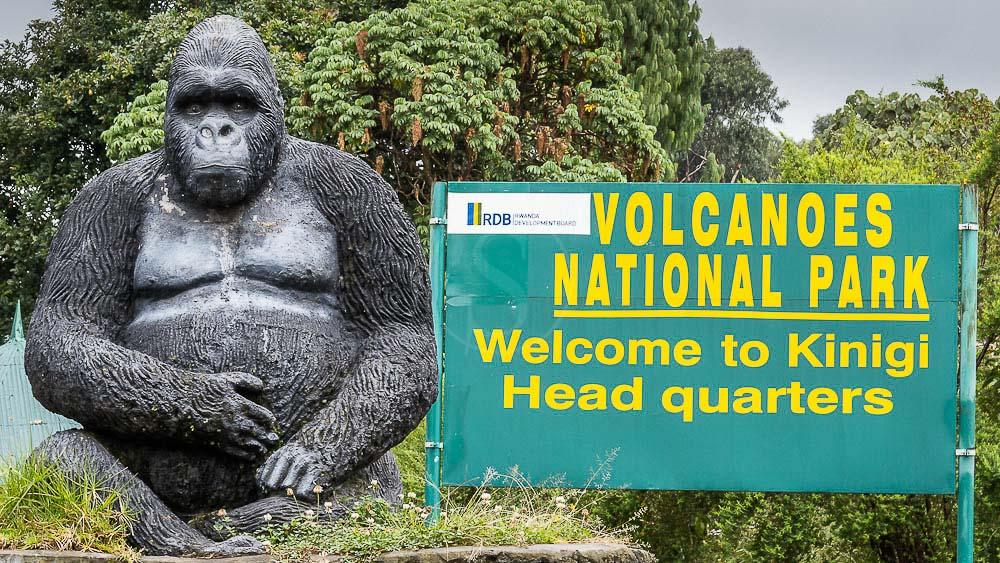 Bureau des Guides du Parc National des Volcans à  Kinigi, Rwanda © Christophe Courteau