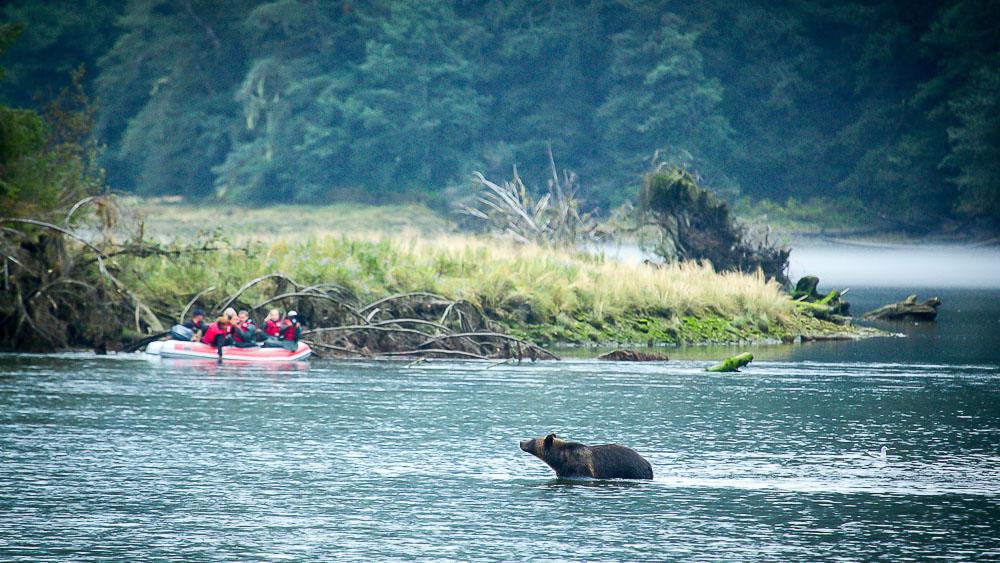 Spirit Bear Lodge, Canada © Spirit Bear Lodge