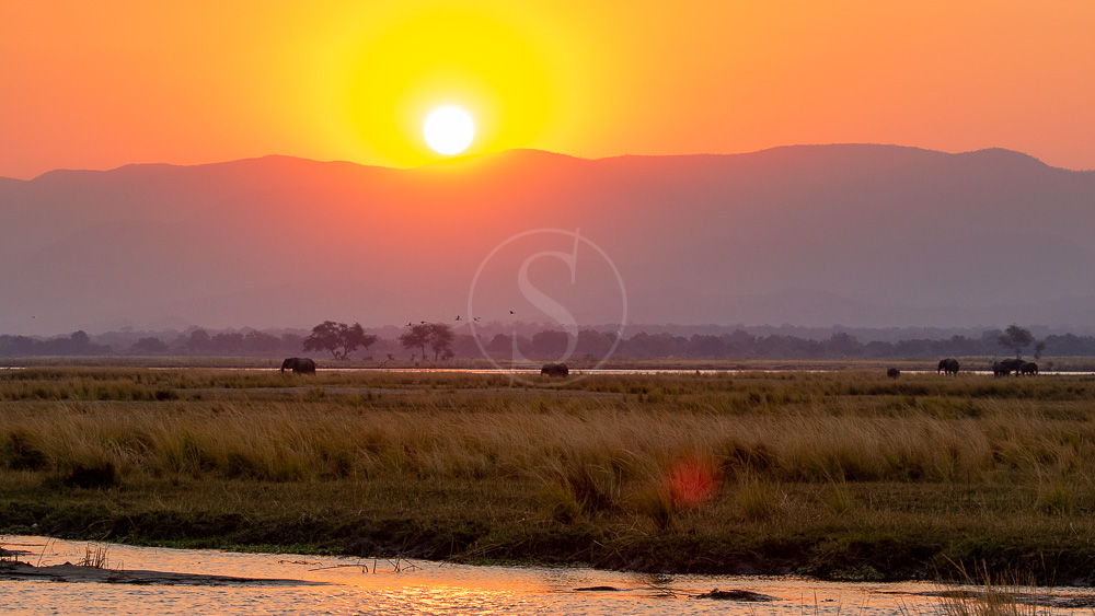 Mana Pools, Zimbabwe © Etendues Sauvages