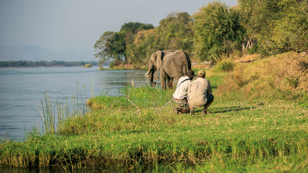 Sapi Explorer, Zimbabwe © Great Plains Conservation