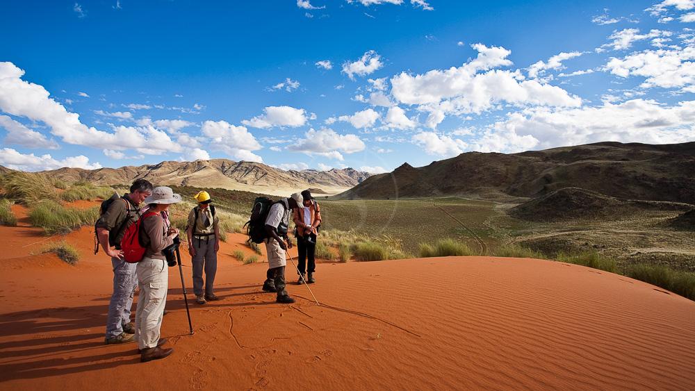 Trek Tok Tokkie, Namibie