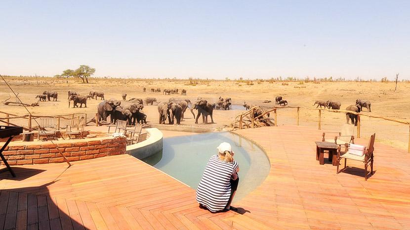 Somalisa Camp, Zimbabwe © African Bush Camps