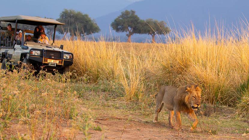 Mana Pools, Zimbabwe © Etendues Sauvages