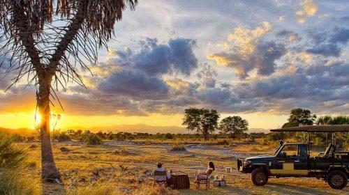 Safari de luxe au Kenya