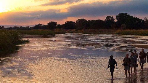 Safari de luxe en Zambie