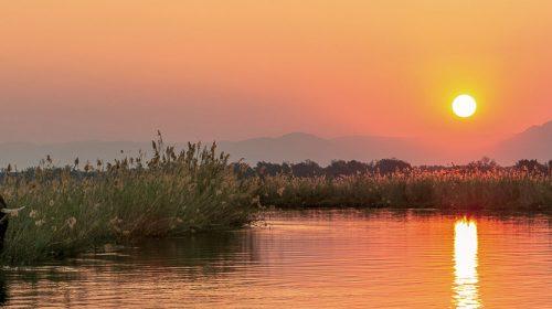 Safari de luxe au Zimbabwe