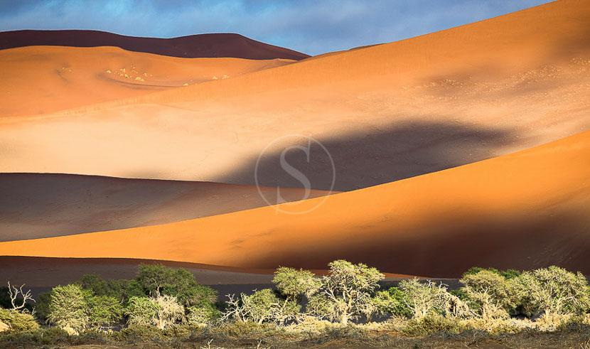 Paysages du Namib, Namibie © Christophe Courteau