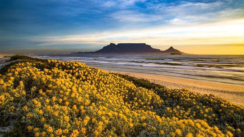 Cape Town, Afrique du Sud © Shutterstock