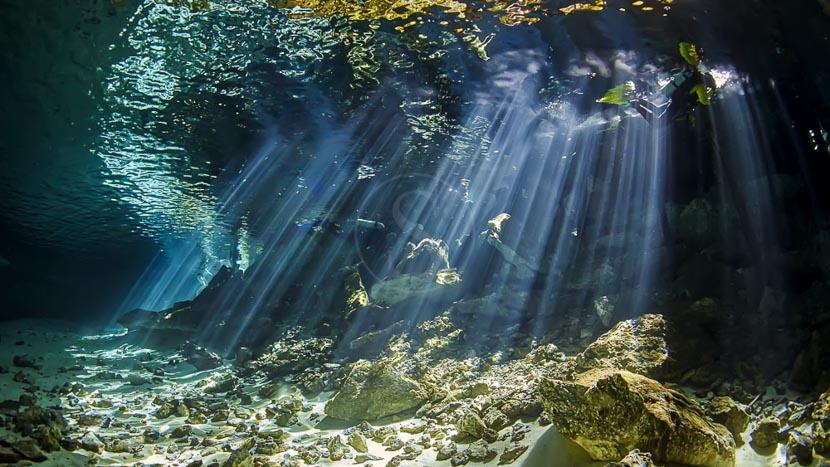 Cenotes du Yucatan, Mexique