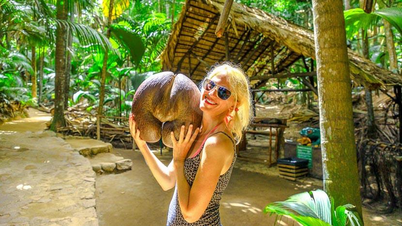 Vallée de Mai sur Praslin, Seychelles © Shutterstock