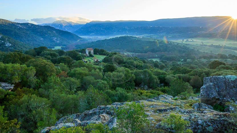 France, Corse du Sud (2A), Domaine de Murtoli, maison A Figa