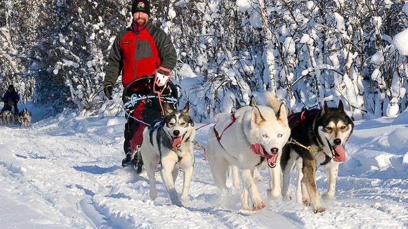 Activités nordiques, Finlande